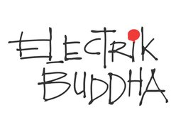 Image for electrik buddha
