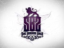 Sing Bandana Singh