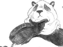Pondering Panda