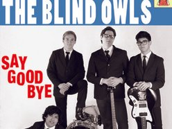 Image for The Blind Owls