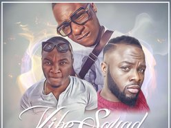 Image for Vibe Squad