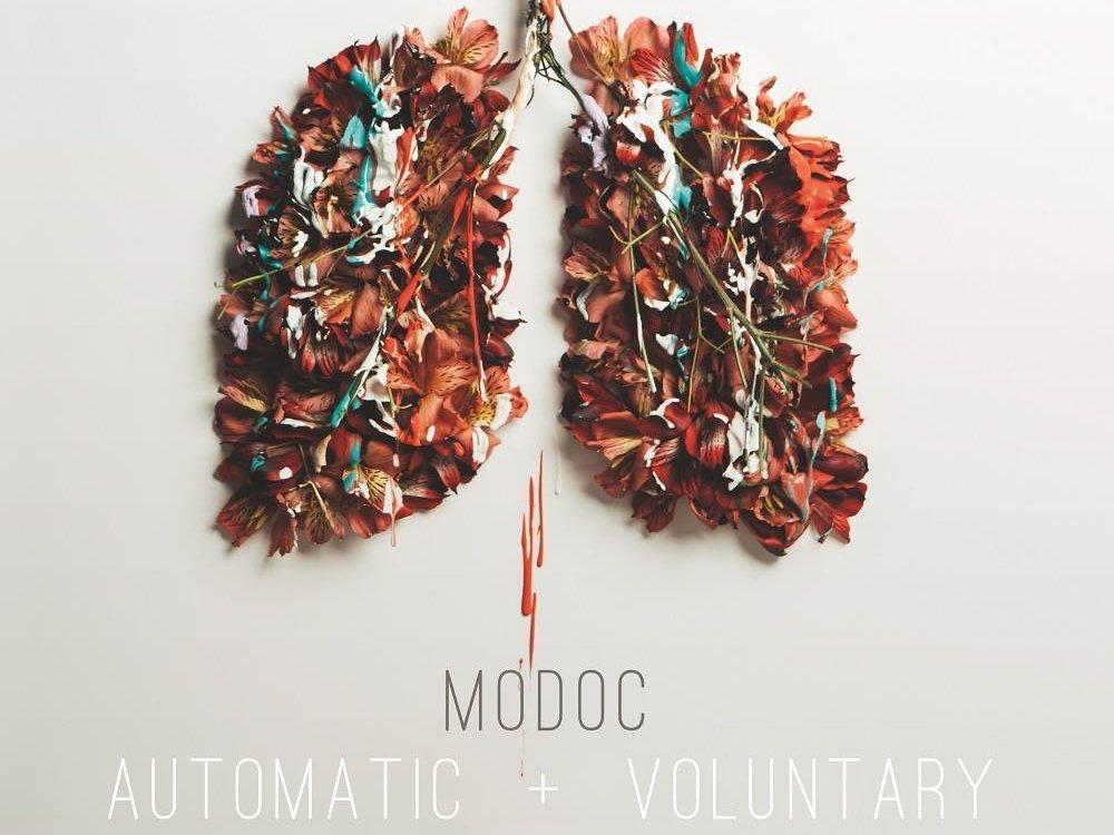 Image for Modoc