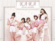 Kpop lovers