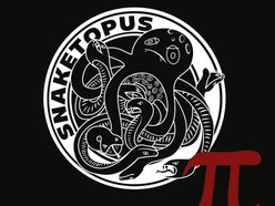 Image for snaketopus