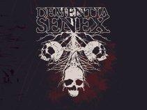 Dementia Senex