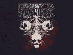 Image for Dementia Senex