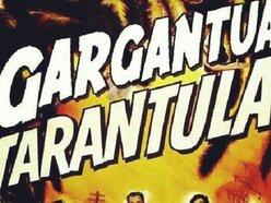 Image for Gargantua Tarantula