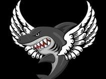 Flying Sharks