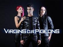 Virgins O.R Pigeons