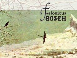 Felonious Bosch