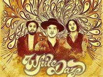 WHITE DAZE