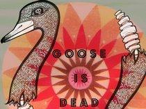 Goose Is Dead