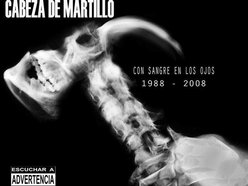 Cabeza De Martillo