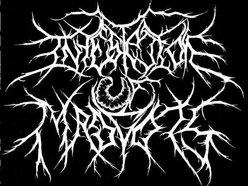 Image for Infestation Of Maggots