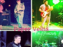 Image for Paper Veins
