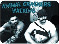 Animal Crackers Walking