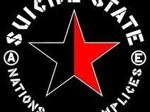 suicide state