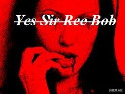 Yes Sir Ree Bob