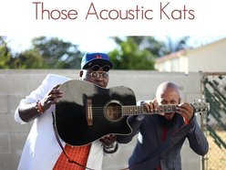 Image for Those Acoustic Kats