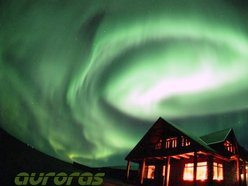 Image for Auroras