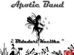 APOTIC BAND
