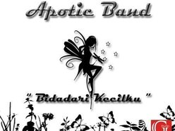 Image for APOTIC BAND