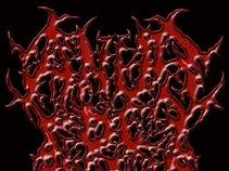 Anus De Satanus