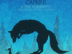 Image for Capkins