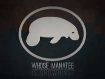 Whose Manatee Is Drowning