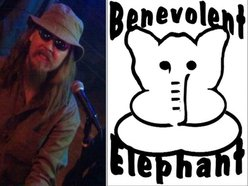 Image for Benevolent Elephant