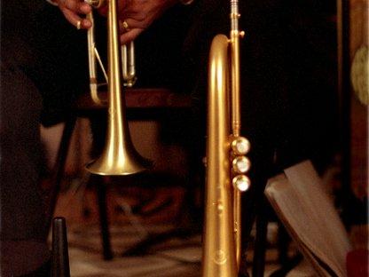 Image for Swingadelic
