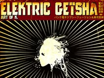 ELEKTRIC GEISHA