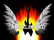 ANGELBREED