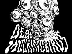 Image for Dead Mockingbirds