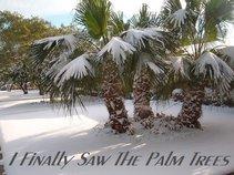 I Finally Saw The Palm Trees