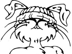 Image for Thumper