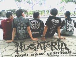 Image for Nugatoria