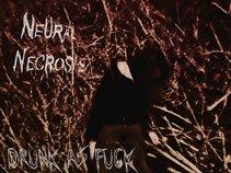 Neural Necrosis