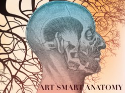 Image for Art Smart Anatomy