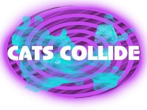 Cats Collide / The Red Room