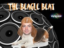 The Beagle Beat