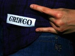 Image for GRINGO