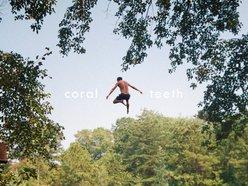 Coral Teeth