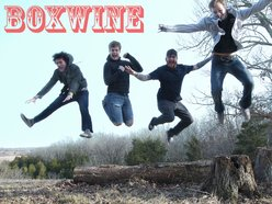 Image for Boxwine
