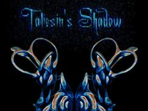 Taliesin's Shadow