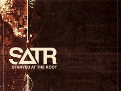 Image for Starved at the Root