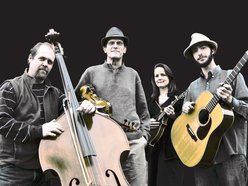 Image for The Kenney-Blackmon String Band