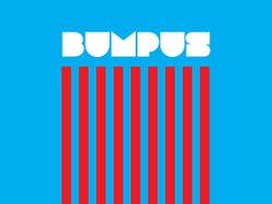 Image for Bumpus