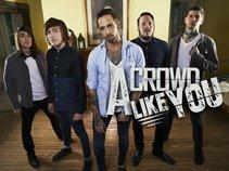 A Crowd Like You