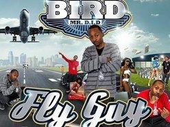 Image for Bird Mr D.I.D